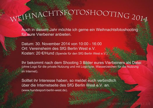 tn_Weihnachtsfotoshooting_2014