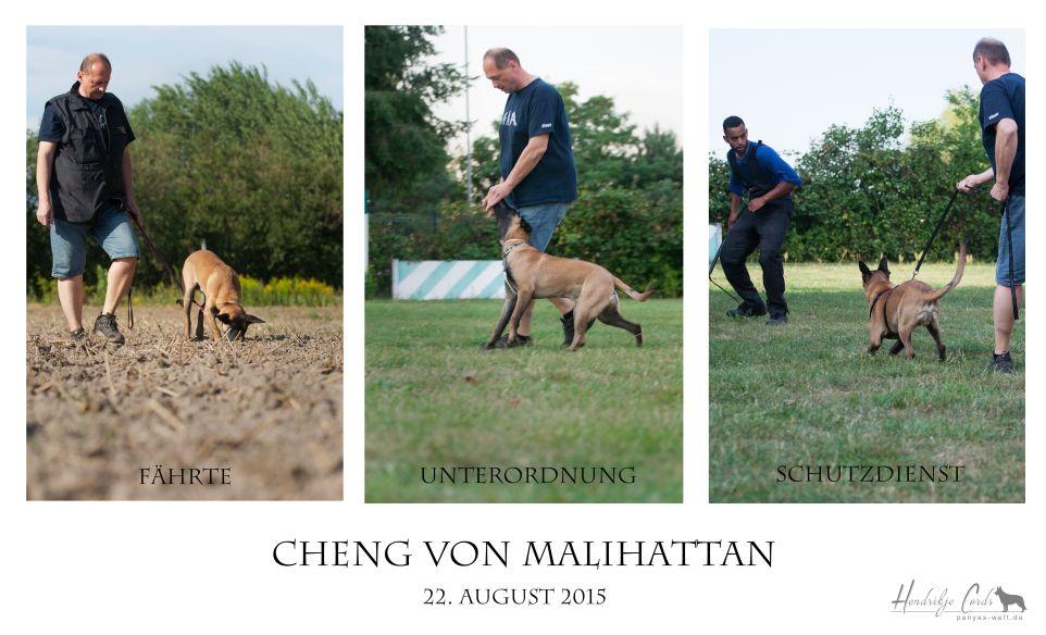 Cheng von Malihattan
