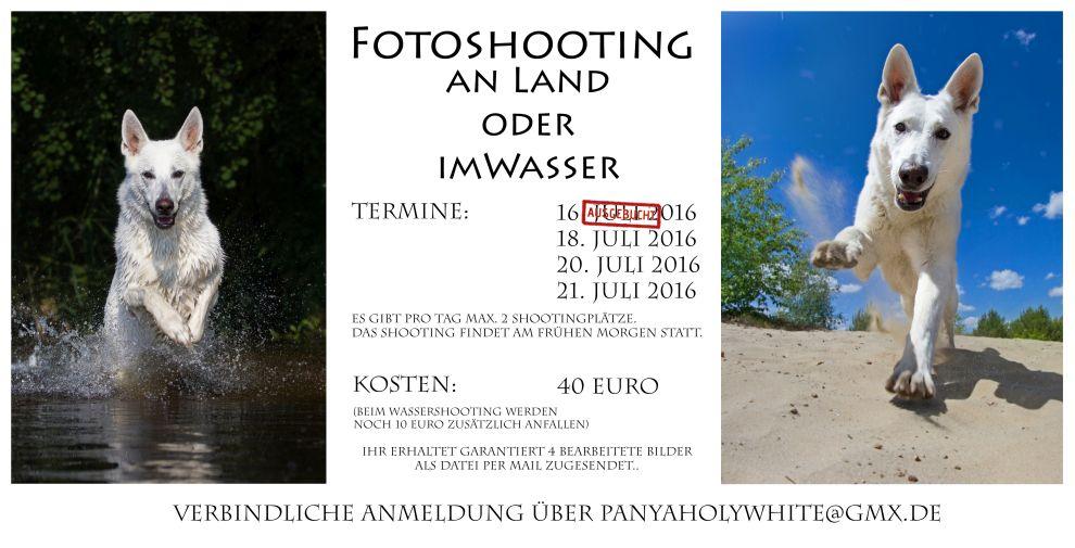Fotoshooting an Land oder im Wasser